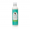 CAMILLE ROSE NATURALS – COCONUT WATER LEAVE IN 2